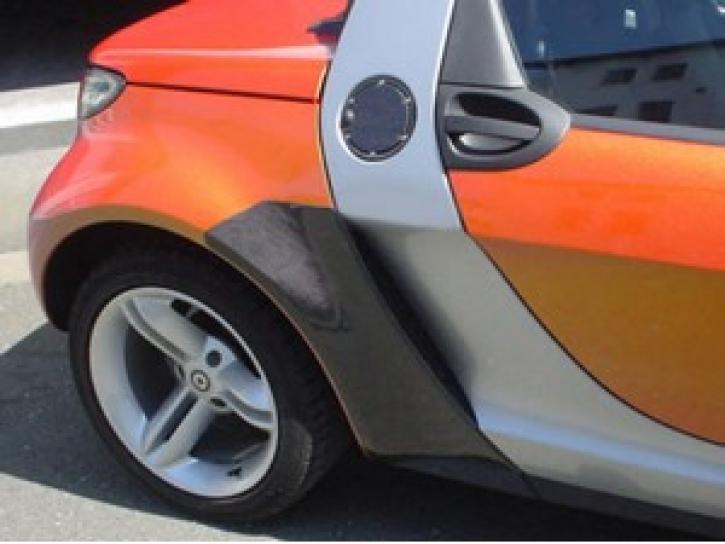 Carbon Steinschlagschutz Roadster schwarz