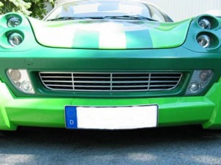Alu-Kühlergrilldekor 1  Roadster