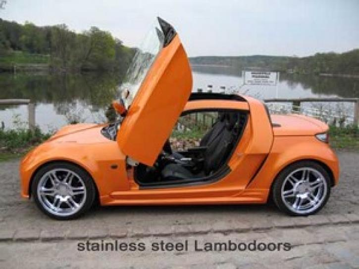 lambo style doors smart roadster stainless st 43497. Black Bedroom Furniture Sets. Home Design Ideas