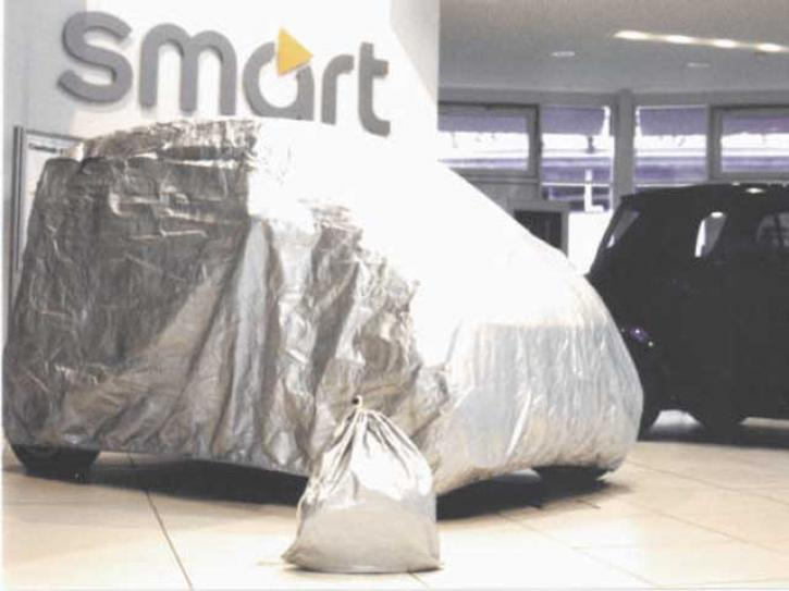 Car Cover for Two 450 maxi