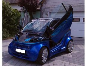 LSD DOORS SMART 450 Coupe