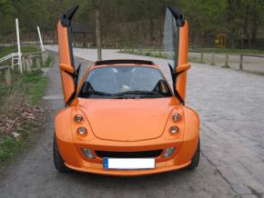 Lambo Style Doors smart Roadster stainless st